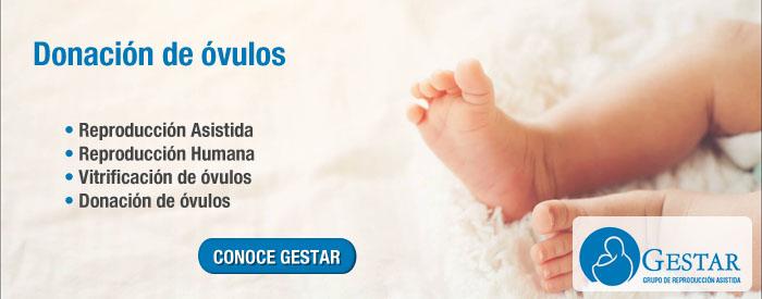 donacion de ovulos argentina, donar ovulos precio, donacion de ovulos precio argentina, donar ovulos compensacion economica