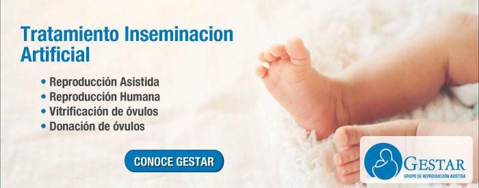 tratamiento inseminacion artificial, Inseminacion artificial en mujeres, Inseminación artificial costos, Inseminación artificial humana